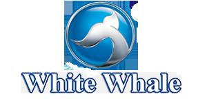 وايت ويل